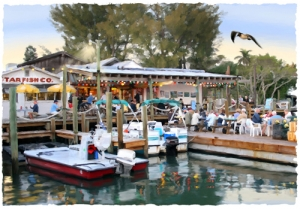 Dining at Star - Cortez Fishing Village, Cortez, Florida