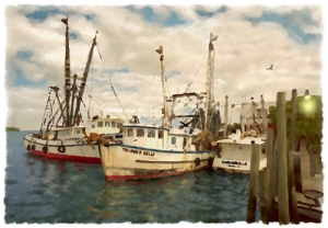 Dockside - Cortez Fishing Village, Cortez, Florida