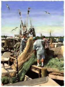 Tending the Nets - Cortez Fishing Village, Cortez, Florida