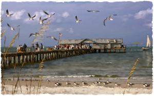 Worth the Walk - Anna Maria City Pier